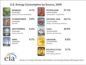 us-consumption-source-2009